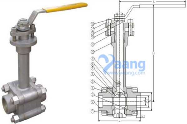 ANSI B16.34 ASTM A351 CF8M Forged Cryogenic Ball Valve 1/4 Inch CL150