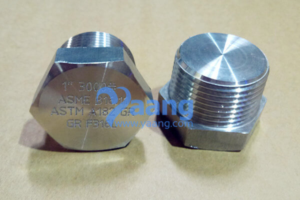 ASME B16.11 ASTM A182 UNS S31603 Threaded Hexagonal Plug 1 Inch Class3000